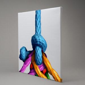 Canvastavla med rep i olika färger